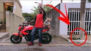 🔴 10 Coisas que Você não Viu - MC Bin Laden e MC Kekel - Agrada o Papai (KondZilla)