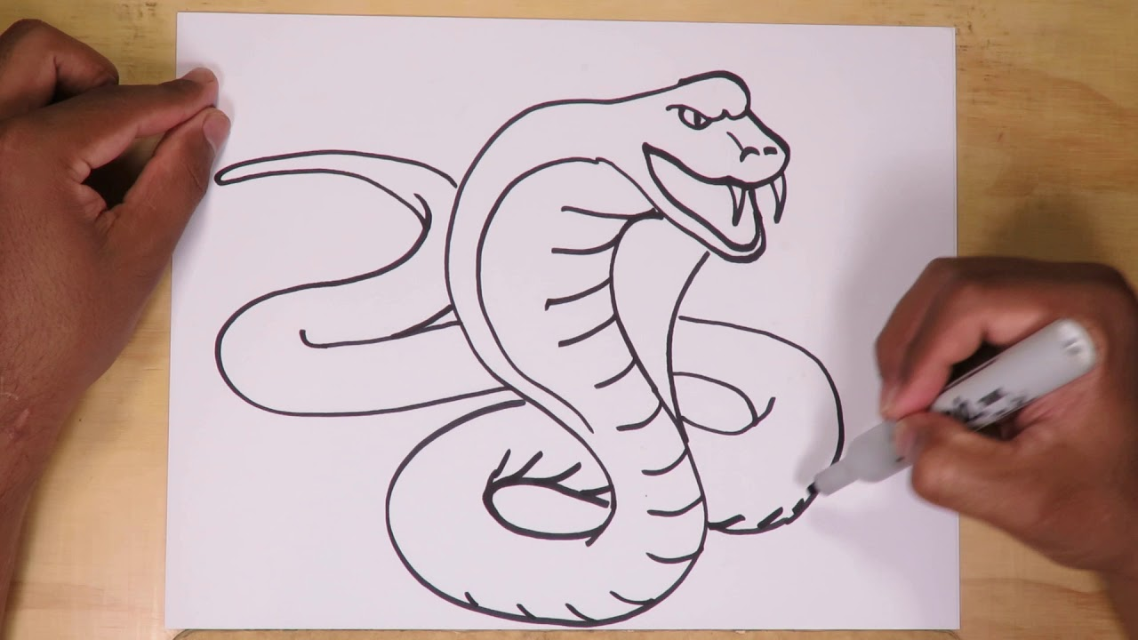How To Draw A Snake Cobra Youtube