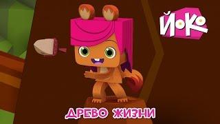 Познавательные мультики детям - ЙОКО 🌳🌞 Древо жизни - Детские мультфильмы