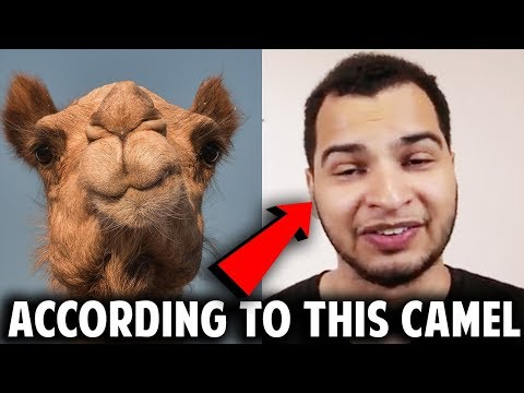 EXOTIC CAR HACKS IS A SCAM?!