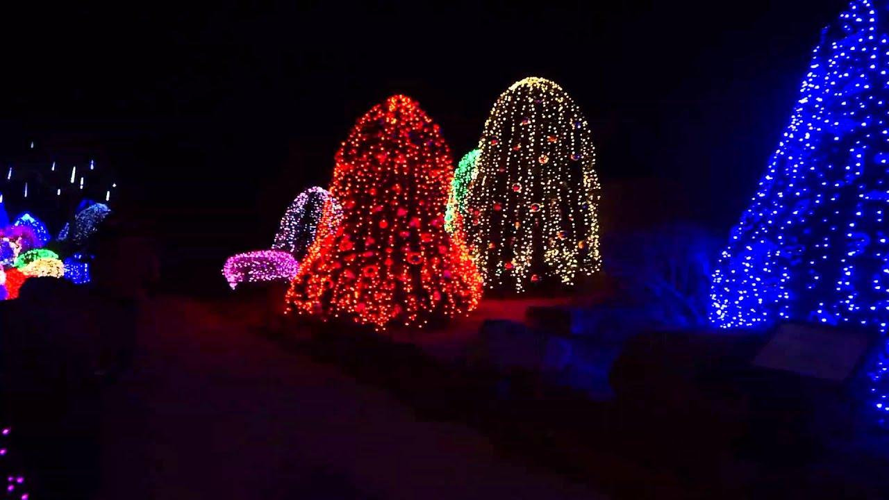 winter lighting festival @ the garden