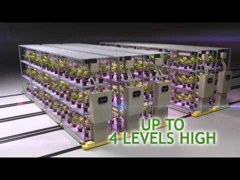 High Density Cultivation System
