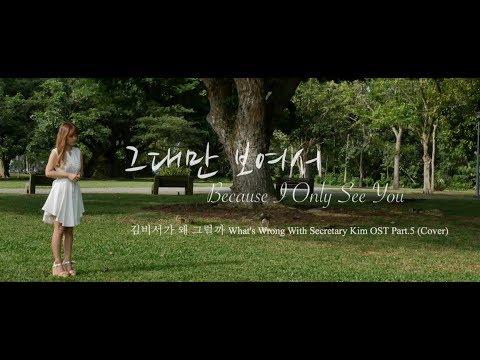 그대만 보여서 Because I Only See You - 김나영 Kim Na Young (Cover + Eng Sub)