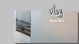 Vlog 일상브이로그 / 소소한 생일주간 / 인공수정 …