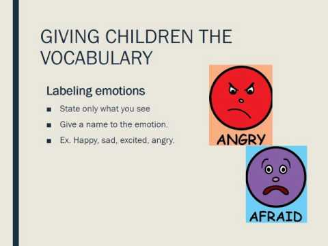 Emotional Development in Early Childhood  FCS 210 Presentation