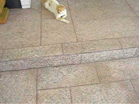 Suelo entrada chalet de granito exclusivo perfecta for Suelo de granito