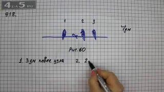 Упражнение 918. Математика 6 класс Виленкин Н.Я.