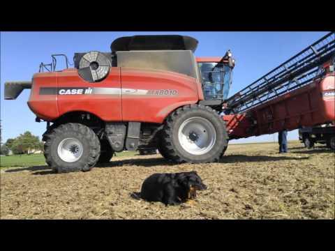 2015 Nesemeyer Family Farms