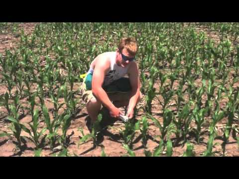 Tribute to Nebraska Agriculture