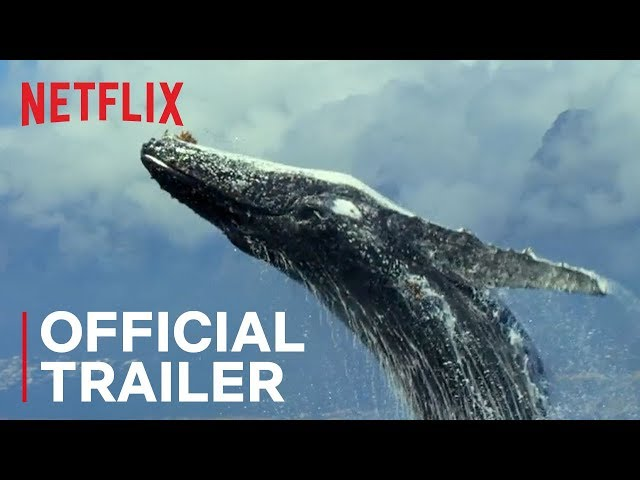 Our Planet | Official Trailer [HD] | Netflix