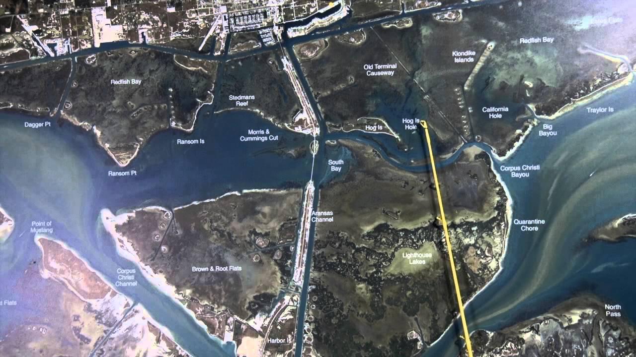 Texas fishing tips fishing report june 11 2015 aransas for Aransas pass fishing