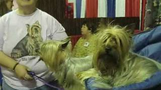 My Theraputic Day at Pet Expo