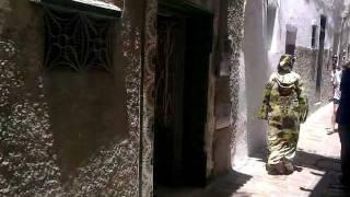 The Royal Palace and the Medina - Tétouan, Morocco
