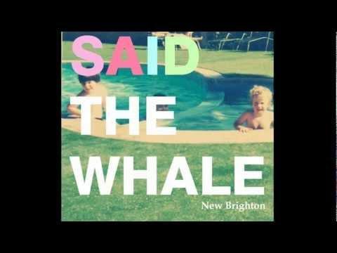 Said The Whale - Little Bird