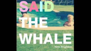 Watch Said The Whale Little Bird video
