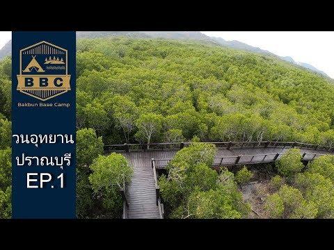 กางเต็นท์ ท่องเที่ยว ศึกษาธรรมชาติ วนอุทยานปราณบุรี  EP.1 เดินชมป่าชายเลน