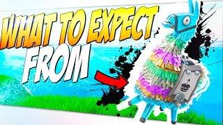 *Free Smörgåsbord Llama* Things You Should Know About Year 2 Birthday Llama | Fortnite STW