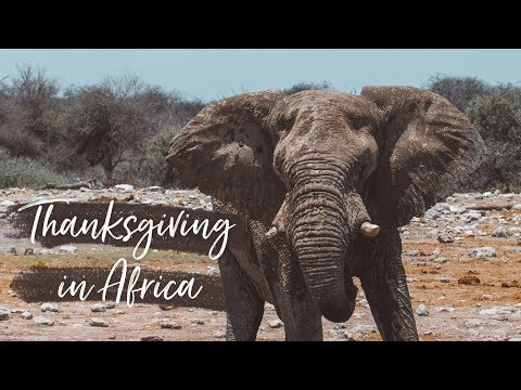We Had Thanksgiving in Africa! - Vlog 178