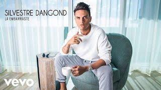 Silvestre Dangond - La Embarraste (Audio)