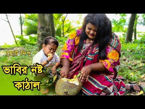 ভাবীর কাঁঠাল নষ্ট | ছোট দিপু | Bhabir Kathal Nosto | Chotu Dipu | Dipur Comedy |Music Bangla Tv