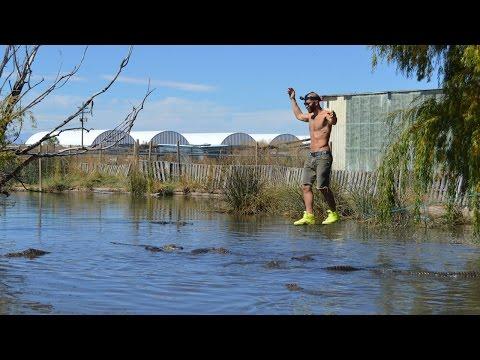 Slacklining Over Alligator Pool
