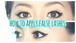 How To Apply False Lashes   Falsies 101   Ardell Lashes, Duo Lash Adhesive
