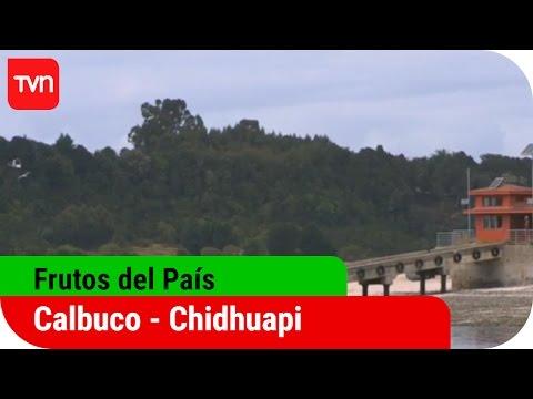 Frutos del país | T12E06: Calbuco - Chidguapi