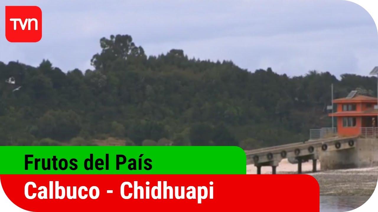 Frutos del país | T12E06: Calbuco - Chidguapi | Buenos días a todos -  YouTube