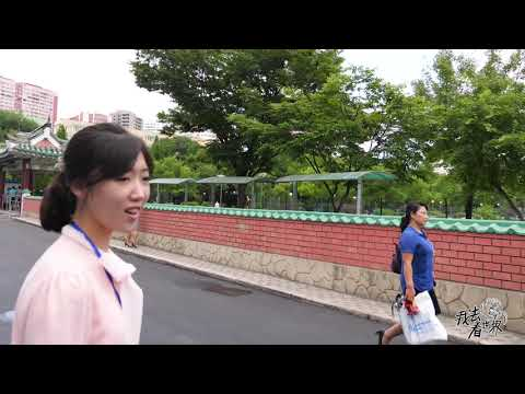 DPRK15: How About The Traffic Rules Of DPRK?