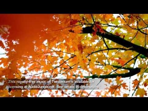 Instrumental Background Music -