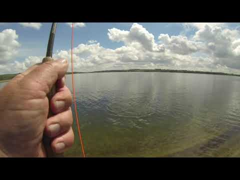 Trout Fishing Farmoor 22 May 2016