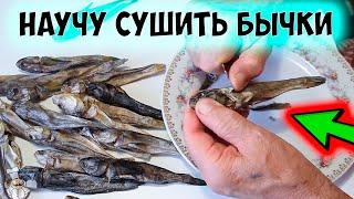Как правильно солить и сушить рыбу в домашних условиях. Сушеный бычок