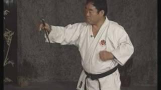 無極堂JAPAN http://www.bushidoshop.jp 商品紹介: http://www.bushido...