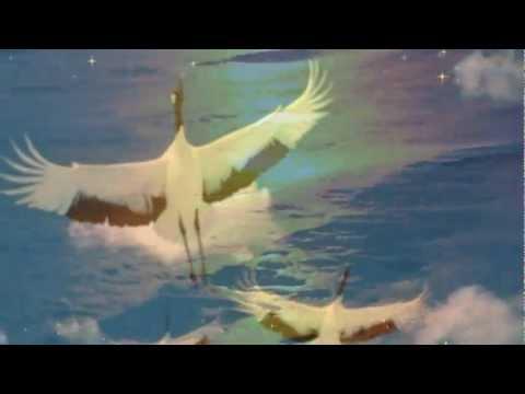 видео: ЕЛЕНА ВАЕНГА - Белая птица -ПЕСНЯ ДЛЯ ДУШИ.....