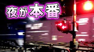 【1時間に19本】貨物列車ラッシュを見に行ったら想像以上に過密だった【磐田】【二ノ宮踏切】