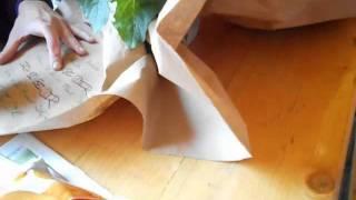 DER POLAR - Videoblog (Folge 4)