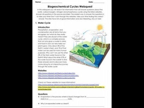 biogeochemical cycles webquest answer key - biogeochemical ...