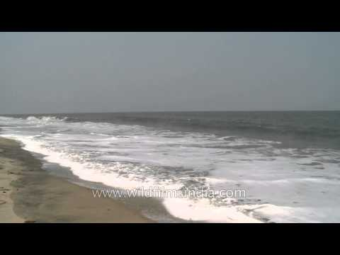 Time lapse of tides at Cherai beach