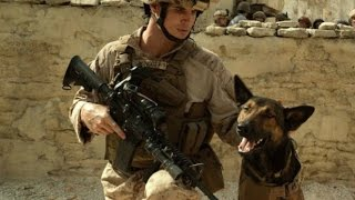Max(War Dog)2015 - BEST SCENE - HD