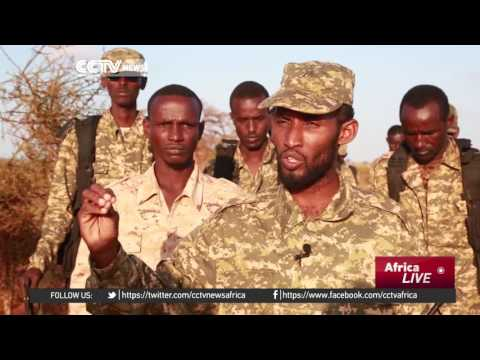 Somalia local forces plan a major offensive against al-Shabaab