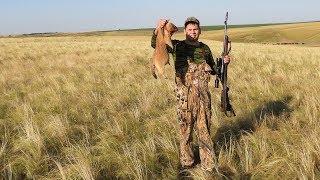Охота на байбака в Ростовских степях 2019
