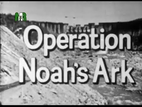 Operation Noah's ARK Campaign, #122 #147