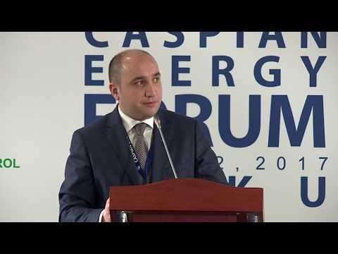 Rəşad Məmmədov - 4-th Caspian Energy Forum - Baku 2017