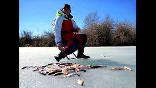 Это видео мотивирует поехать на рыбалку