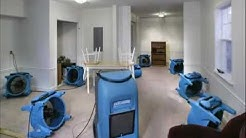 HINSDALE Carpet CLEANING & RESTORATION SERVICES, CARPET TILE CLEANING