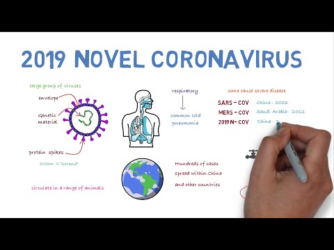 2019 Novel Coronavirus – A Quick Overview.