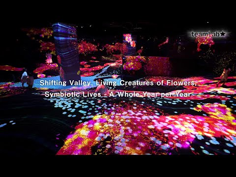 Shifting Valley, Living Creatures of Flowers, Symbiotic Lives - A Whole Year per Year