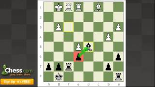 Grandmaster Chess Tournaments: World Cup Reviews | Part 2!