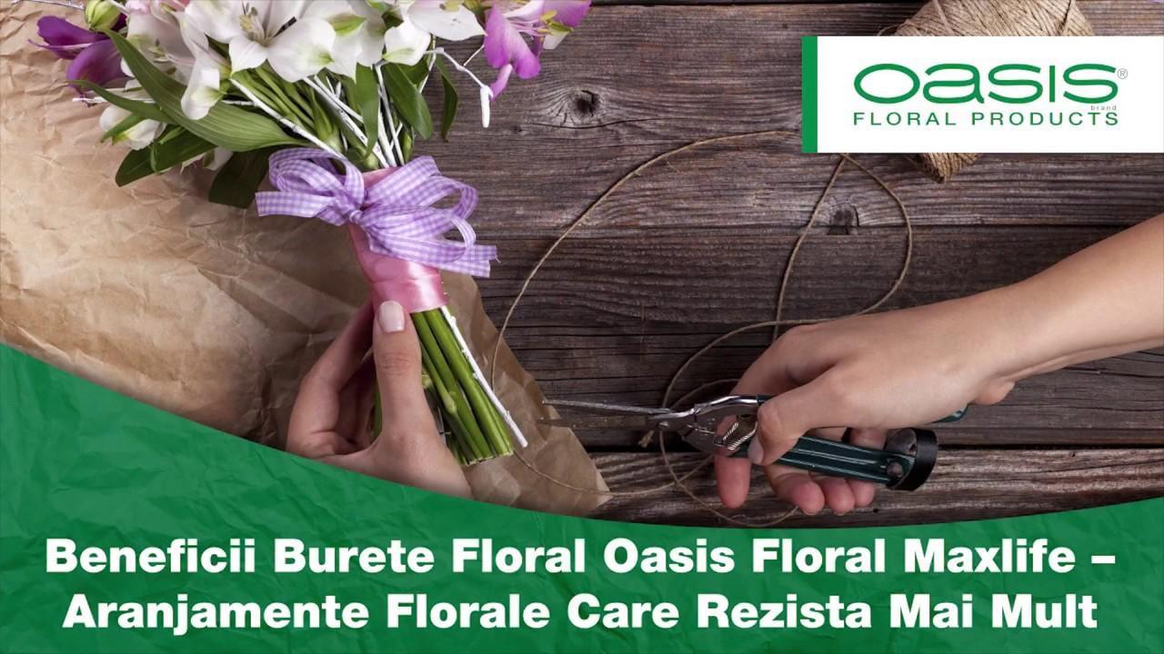 Beneficii Burete Floral Oasis Floral Maxlife Aranjamente Florale