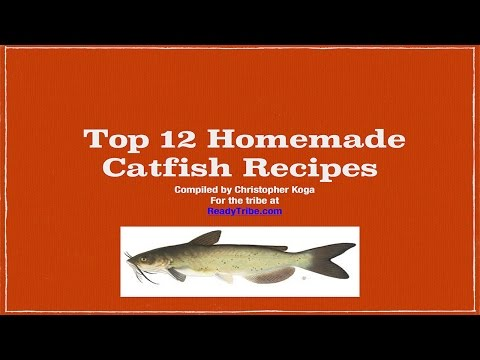 homemade catfish bait from YouTube · Duration:  8 minutes 59 seconds  · 79,000+ views · uploaded on 9/16/2010 · uploaded by bassmaster785